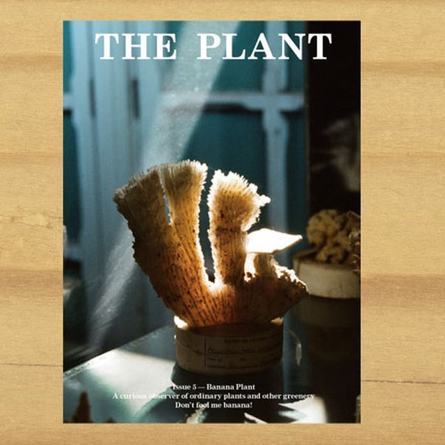image: The Plant Journal #5 – I LOVE PAPER by aliceandgabriella