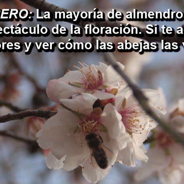 image: Recomendación NATURAL Febrero by @accionatura by accionatura