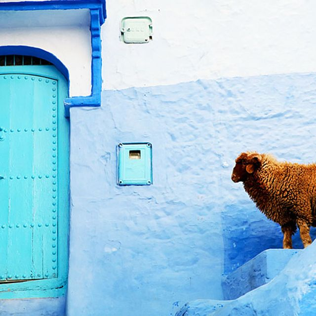 image: Morocco Blue Walls Town by jrgaguilar