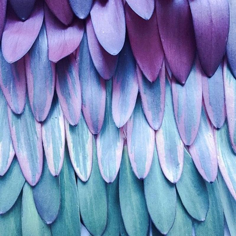 image: NATURE IS ART by art_seeker