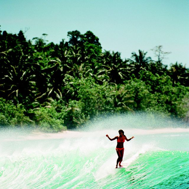 image: SURFING by herbert-nitsch