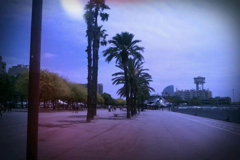 image: Barcelona by lorenafdez