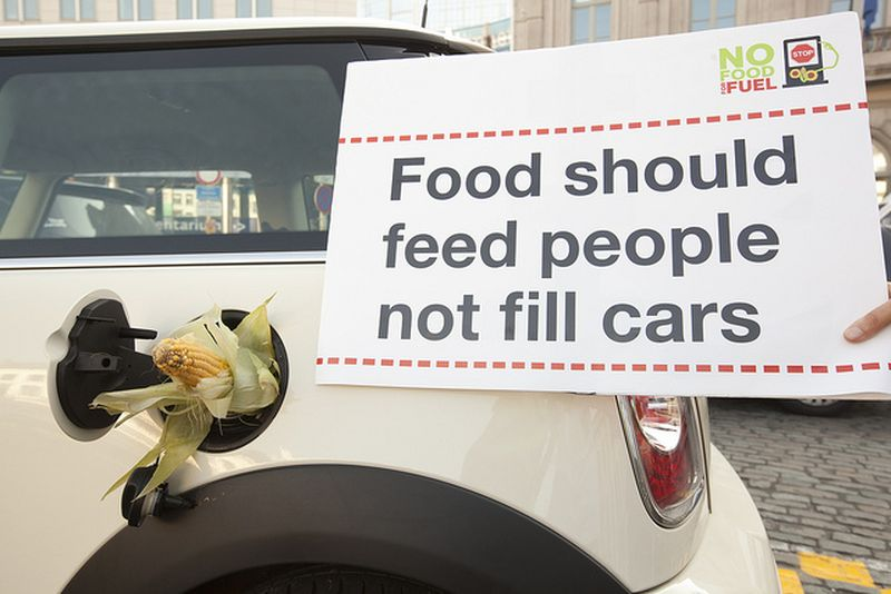 image: Food should feed people not fill cars by ayudaenaccion