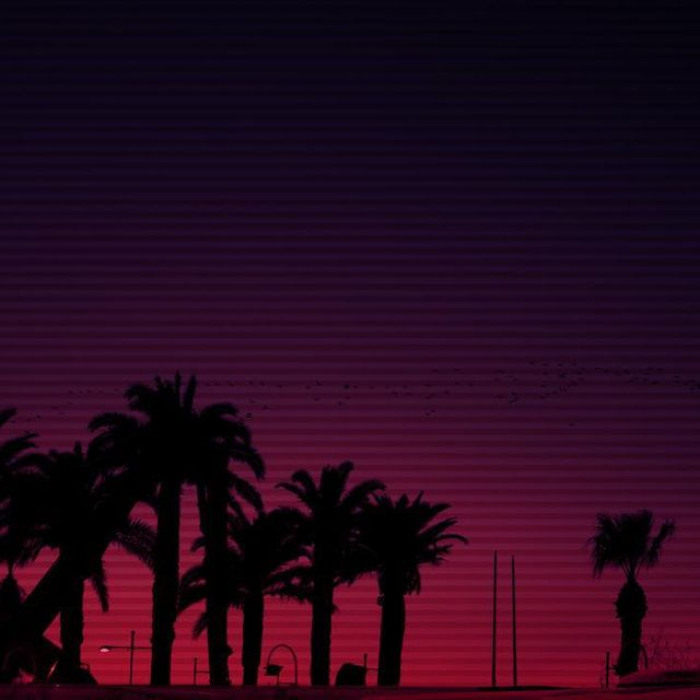 image: Pink Palm Trees by motelvibes