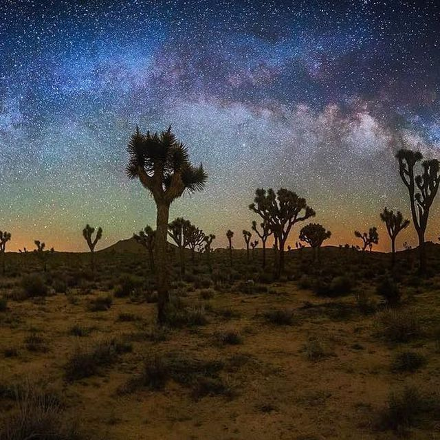 image: One of my favorite locations to observe and photograph the night sky is at @joshuatreenps! Where is yours? by seanparkerphotography