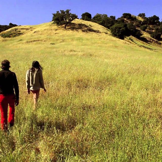 video: Adanowsky y Devendra Banhart- Dime cuándo by bellucci