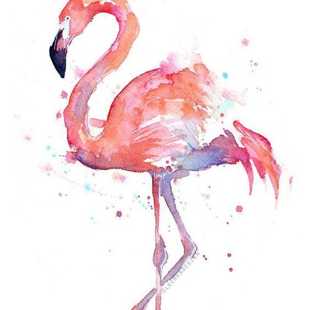 image: FLAMINGO by art_seeker