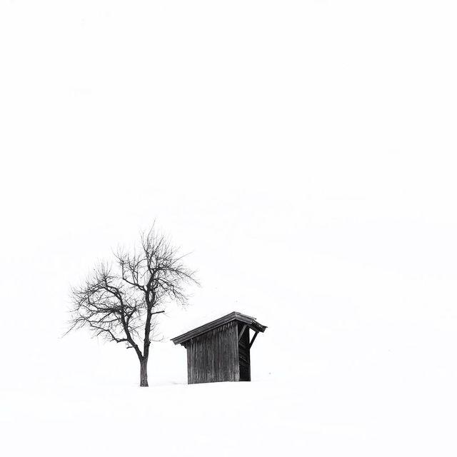 image: White world ~ by plndm
