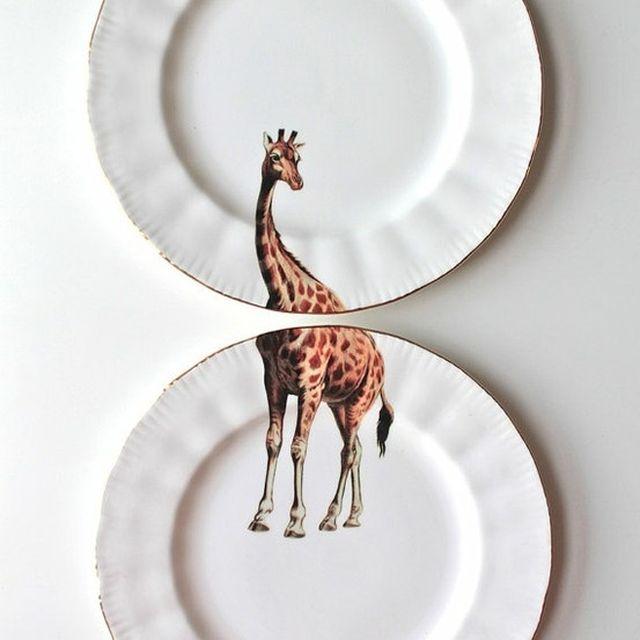 image: giraffe by mordovas