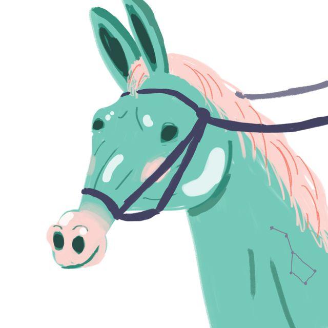 image: Spirit mule by luisrico