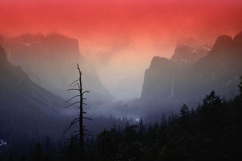 image: Yosemite National Park by jorge_lana