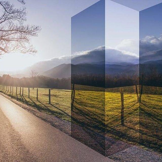 image: #thetwistedivy #jasoncampbellstudio by jasoncampbellstudio