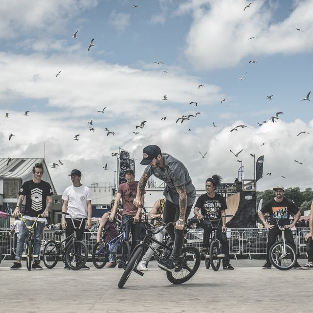 image: Seagulls and flatriders by alberto_moya