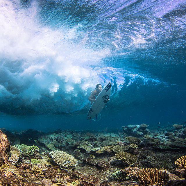 image: MALDIVES by luciamartino