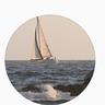 sailing_boats's avatar