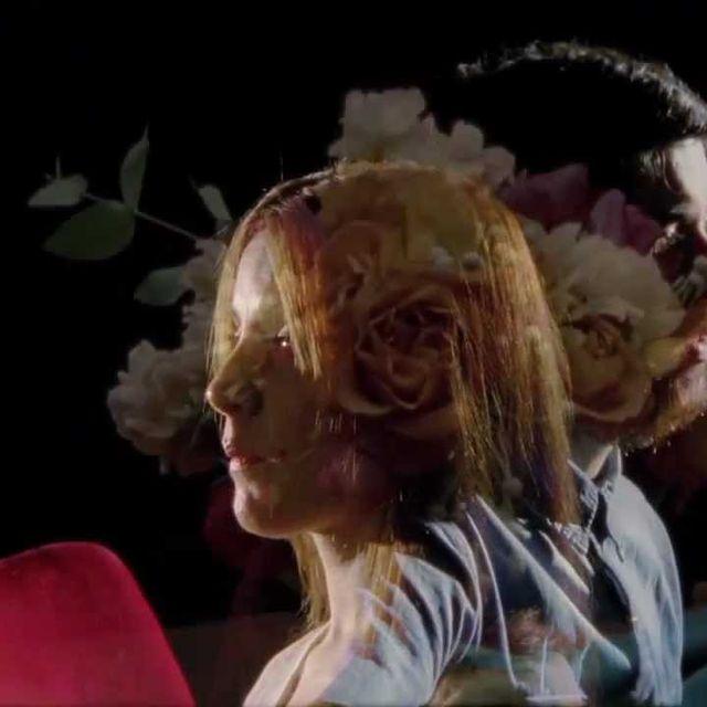 video: LA FAMILIA DEL ARBOL - ¿Tú me quieres? (official) by familiadelarbol