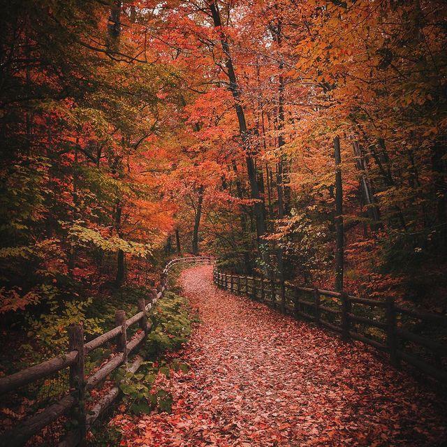 image:  Niagara Region  by mindzeye