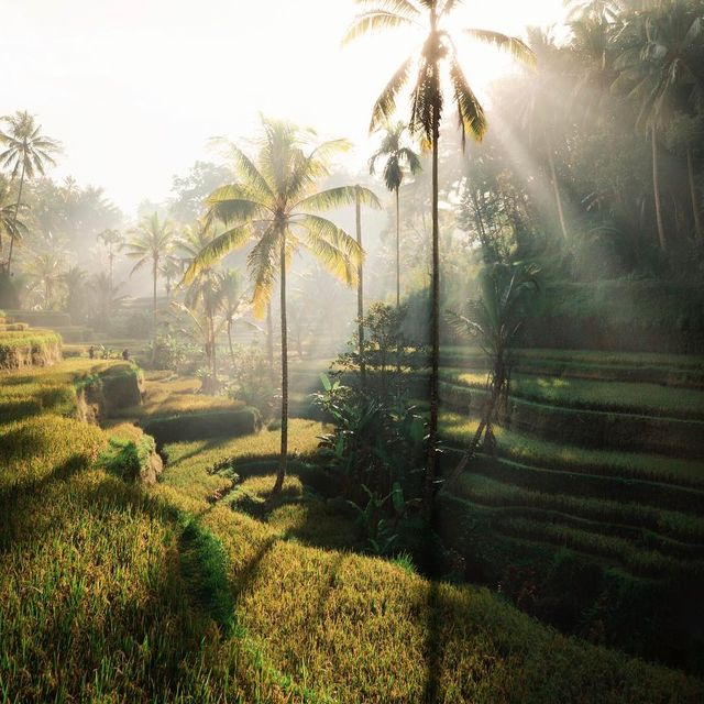 image: I've never seen light rays as many times as I have here in Bali. by josiahwg