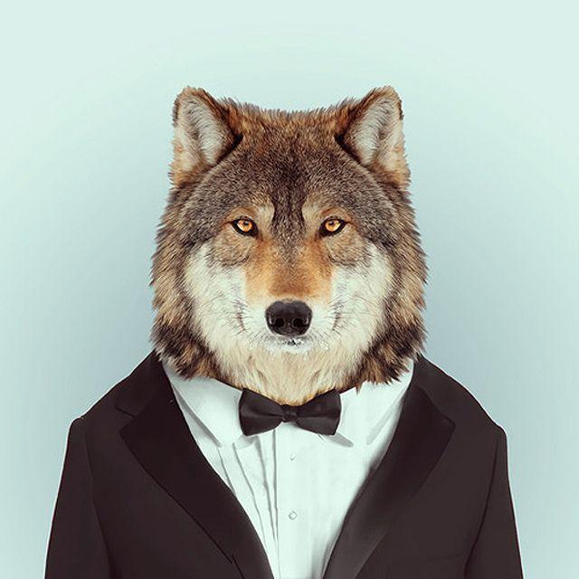 image: Fashion Zoo Animals by dsaltaren